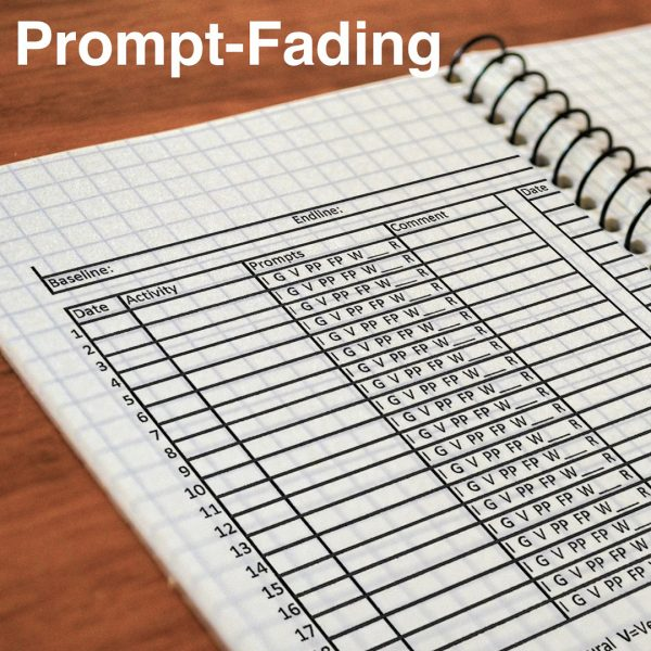 SMARTER Steps Prompt-Fading graph displayed in a lined notebook