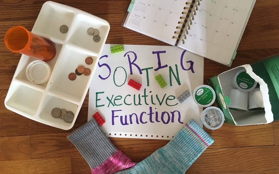 Smarter Steps: Using Sorting Tasks for Executive Functioning IEP Goals